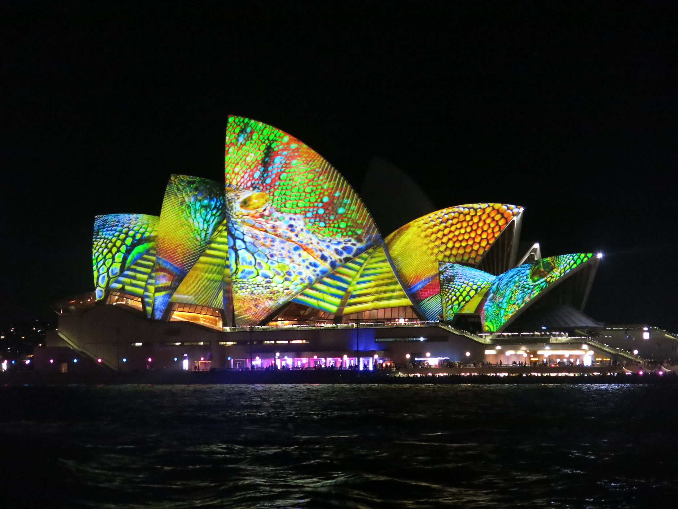 Four Frogs creperies > Vivid Opera House